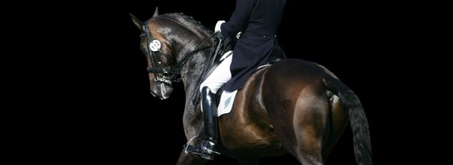 Dressage - Gareth Hughes from behind