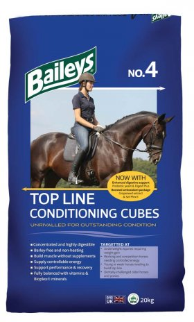 No 4 Top Line Conditioning Cubes