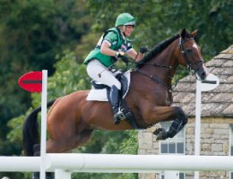 See the eventing profiles