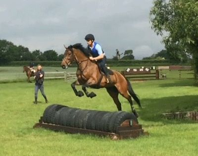 From Show Jumping to Eventing