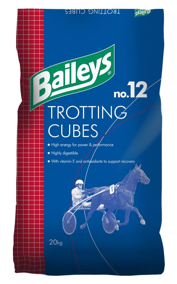 No.12 Trotting Cubes