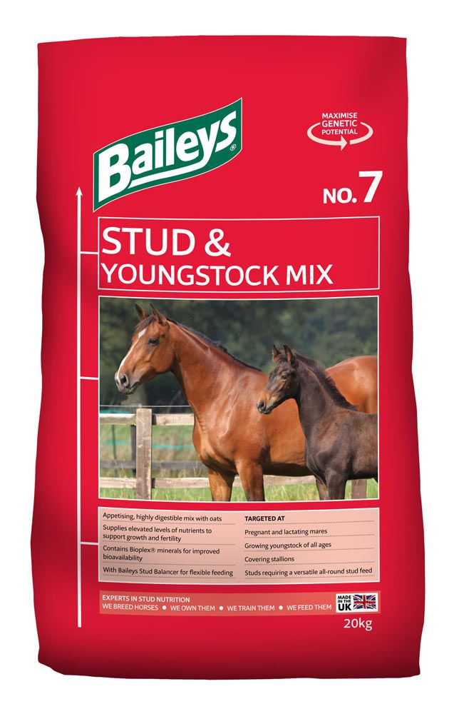No. 7 Stud & Youngstock Mix