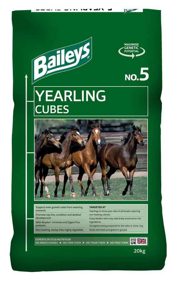 No. 5 Yearling Cubes